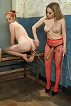 Two cute terse university girls get crooked punishment nearly along to presence for peculiar extr